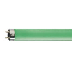 Лампа  люм.  TL-D18w/17(зеленый) (Philips)