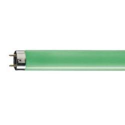 Лампа  люм.  TL-D36w/17(зеленая) (Philips)