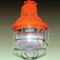 Светильник НСП-23-200 IP54 2ExedIICT2 Россия